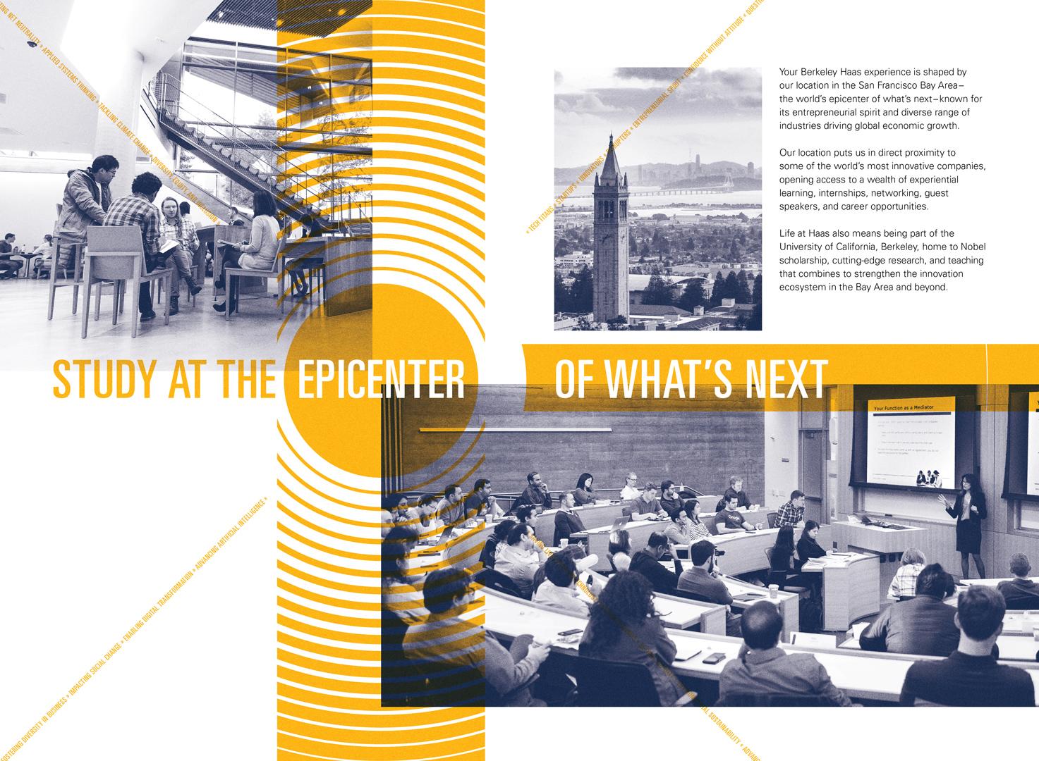 Berkeley Haas brochure spread